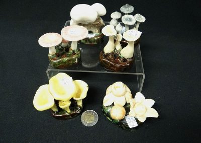 Misc-Lorenzen-Mushrooms-3