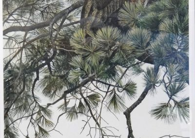 Lot-043 Robert Bateman Ltd Edition 42x28