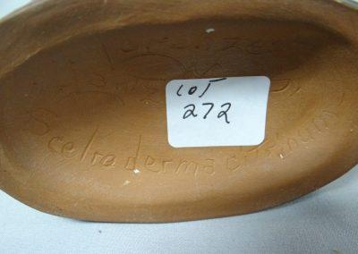 Lot-272a